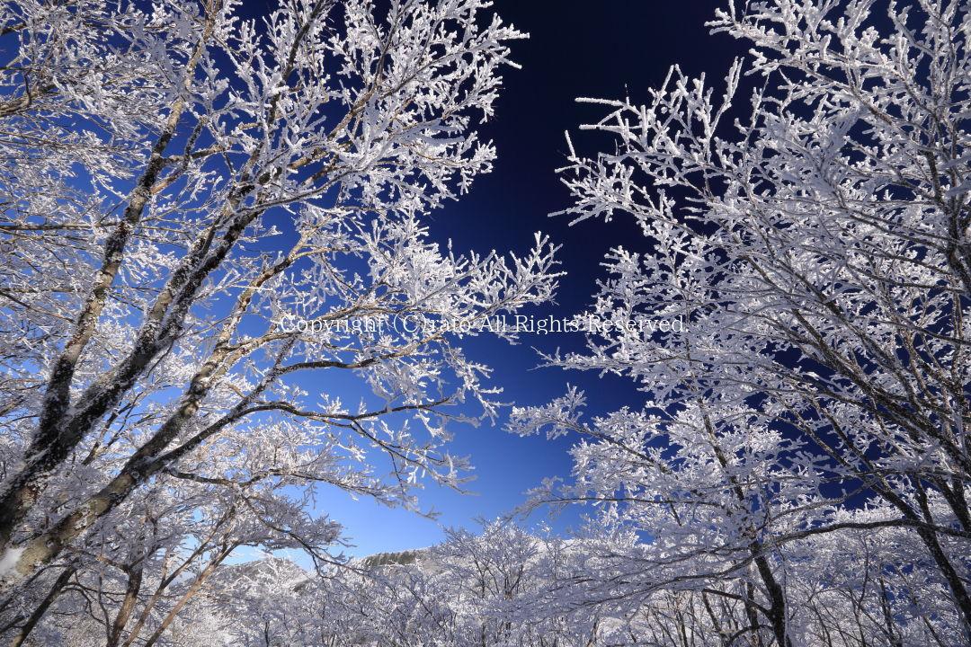 f0236776_20082151.jpg