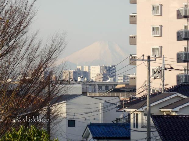 Mt. Fuji_b0234690_17500958.jpg