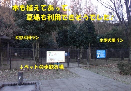 f0121712_08465039.jpg