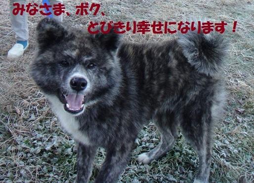 f0121712_14325094.jpg