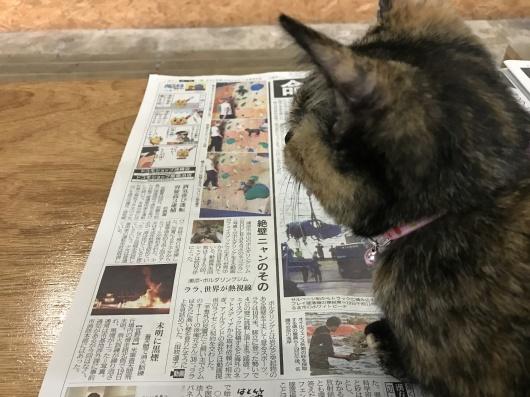 琉球新報_e0268519_17361179.jpg