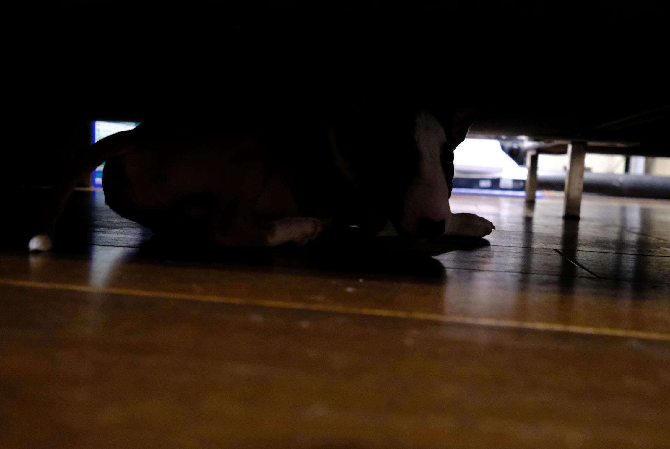 ソファーの下はハイパードライブスペース_b0310424_18321451.jpg