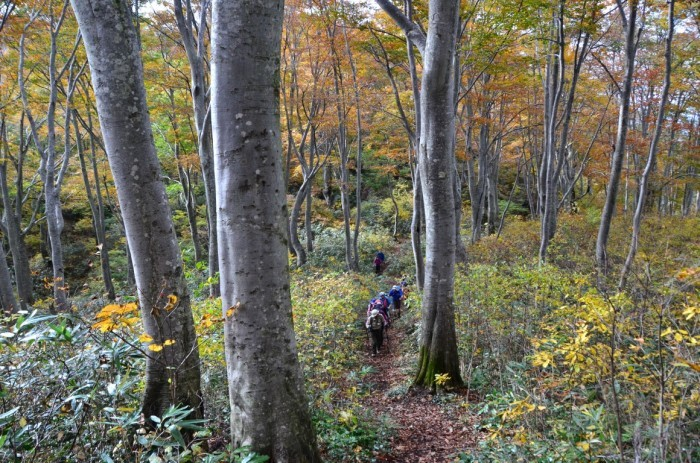 Shinetsu Trail Tour 2016 Oct 13 to Oct 23 [Part 4]_d0112928_07565726.jpg