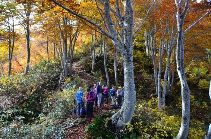 Shinetsu Trail Tour 2016 Oct 13 to Oct 23 [Part 4]_d0112928_07580431.jpg
