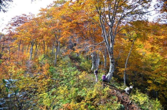 Shinetsu Trail Tour 2016 Oct 13 to Oct 23 [Part 4]_d0112928_07580962.jpg