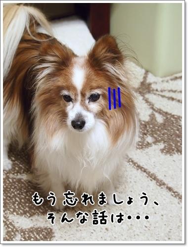 d0013149_00104824.jpg