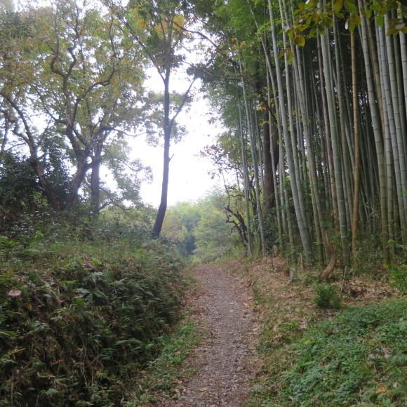 山の辺の道(北)を奈良から天理まで歩いた話3_c0001670_20093410.jpg