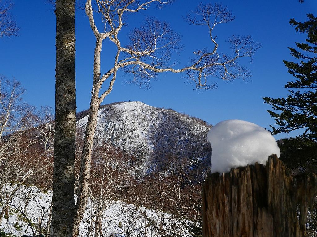 幌平山、12月19日_f0138096_12313760.jpg