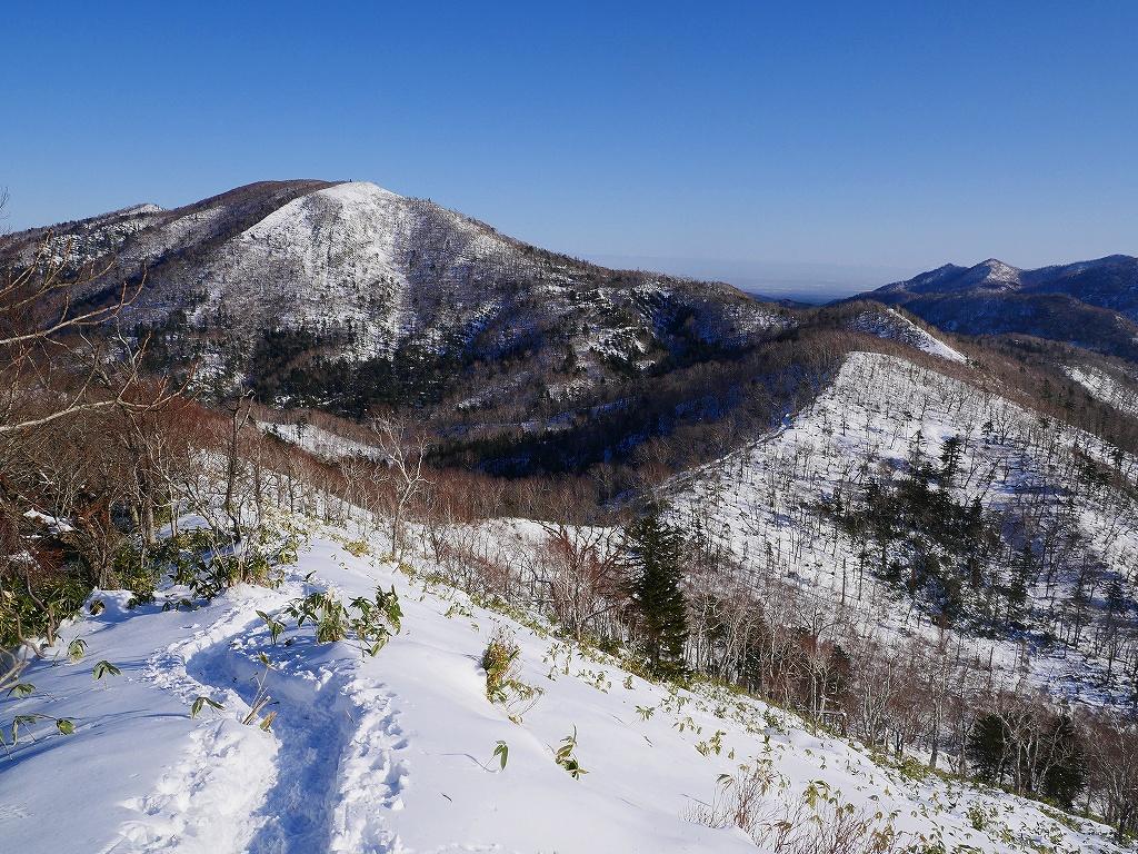 幌平山、12月19日_f0138096_12321077.jpg