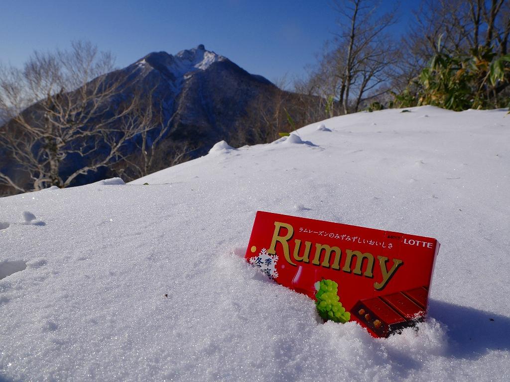 幌平山、12月19日_f0138096_12324170.jpg