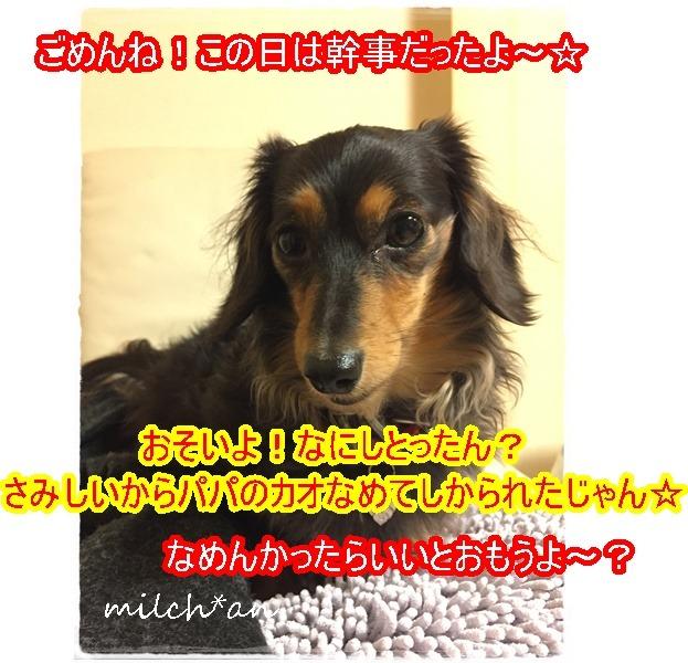b0115642_21441610.jpg