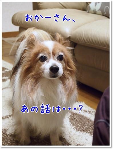 d0013149_01080435.jpg