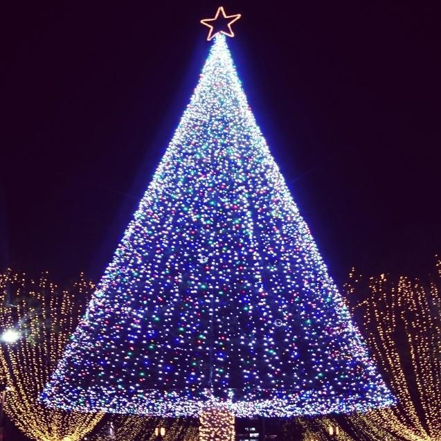 もうすぐクリスマス!_b0189509_01013791.jpg