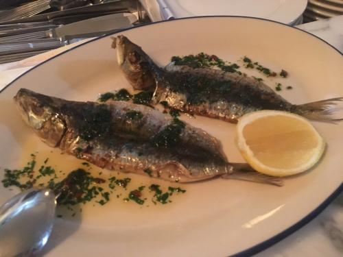 ギリシャ料理⭐︎ アポロ_c0151965_22021016.jpg