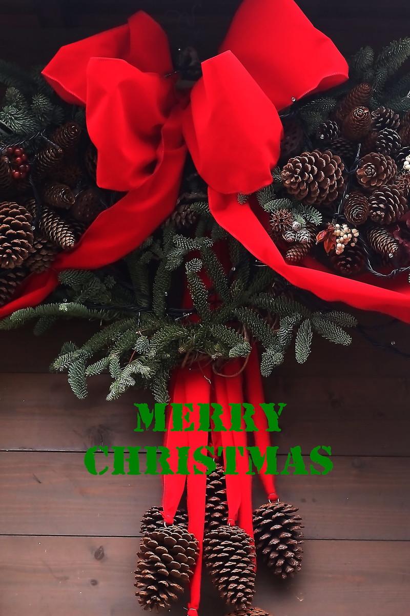 Merry Christmas_a0170082_14101898.jpg