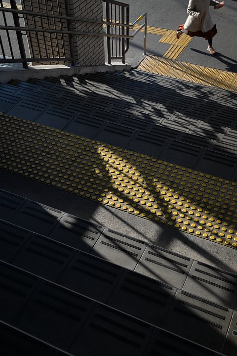 初冬の駅にひそむ光蜥蜴 (写真部門)_d0353489_17525257.jpg