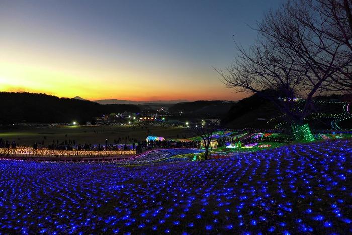 東京ドイツ村のイルミネーション_a0127090_1533168.jpg