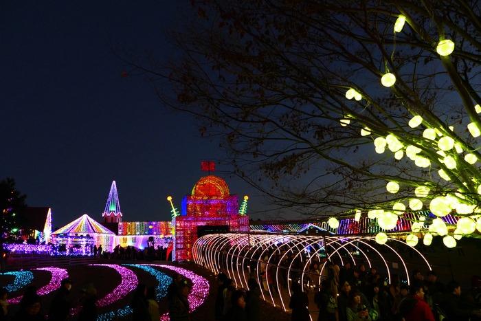 東京ドイツ村のイルミネーション_a0127090_1551549.jpg
