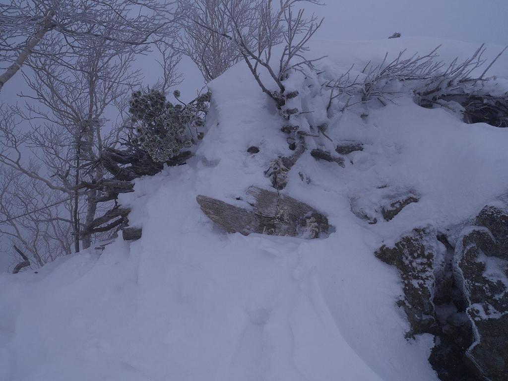 恵庭岳、12月21日_f0138096_957695.jpg