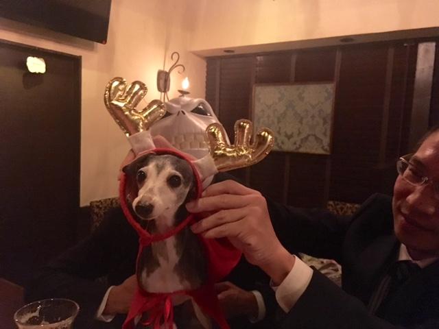 miumiuのクリスマス会。_a0050302_16403965.jpg