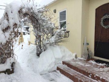 大雪!!とweb shopの年末年始のお知らせ♪_f0295063_12122652.jpg
