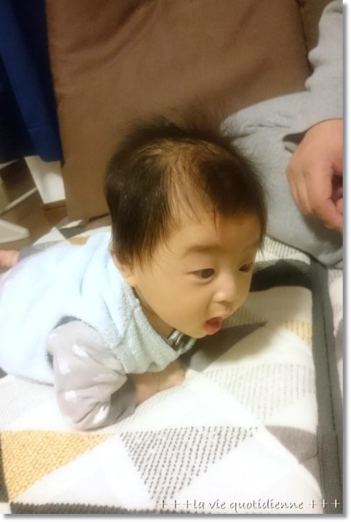 王子、生後3ヶ月になった記録♪_a0348473_09290277.jpg