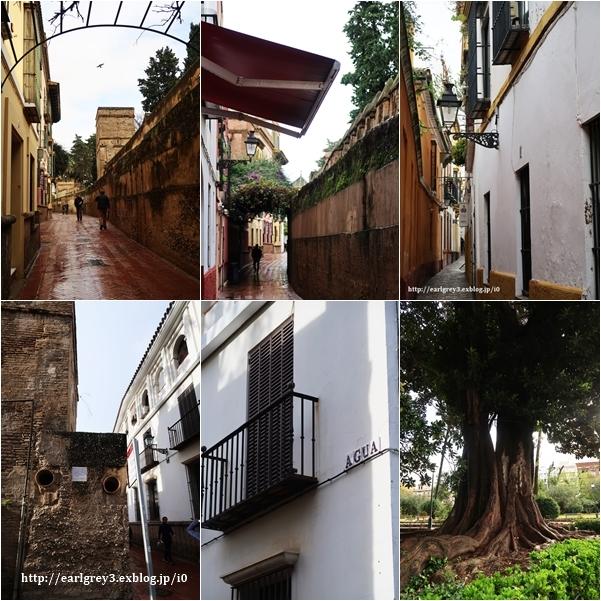 スペイン旅 2016   セビリア カテドラル・ヒラルダの塔・サンタクルス街_d0353281_00223327.jpg