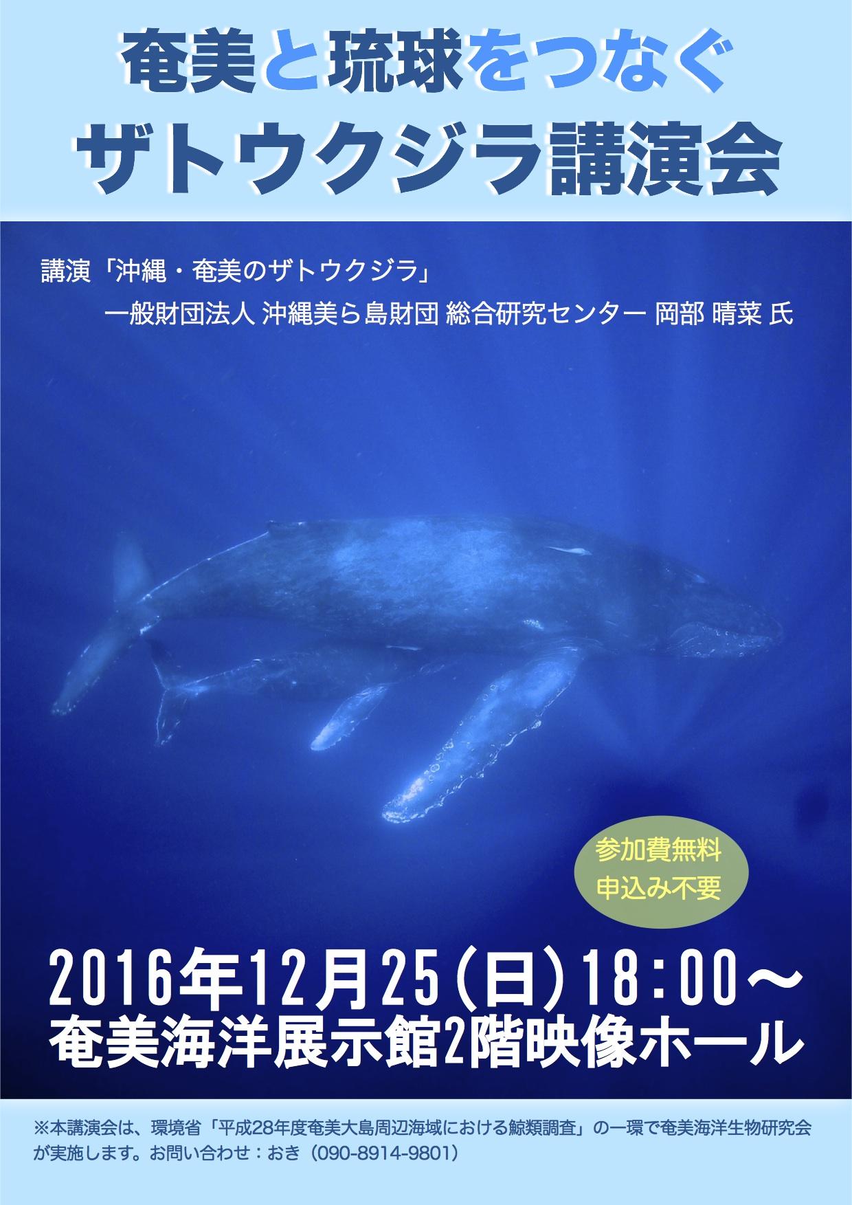12/25 ザトウクジラ講演会開催_a0010095_884627.jpg