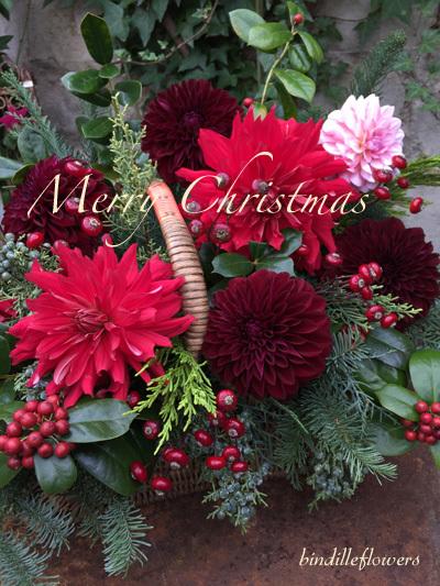 Merry Christmas from Brindille ☆ 素敵なクリスマスを!_b0138802_23121027.jpg