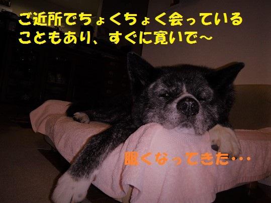 f0121712_06394701.jpg