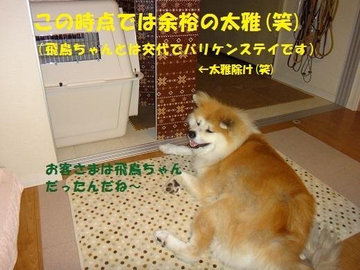 f0121712_06395106.jpg
