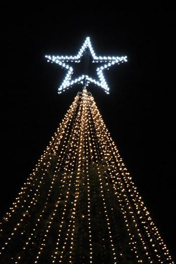 クリスマスイルミネーション_e0048413_225513.jpg