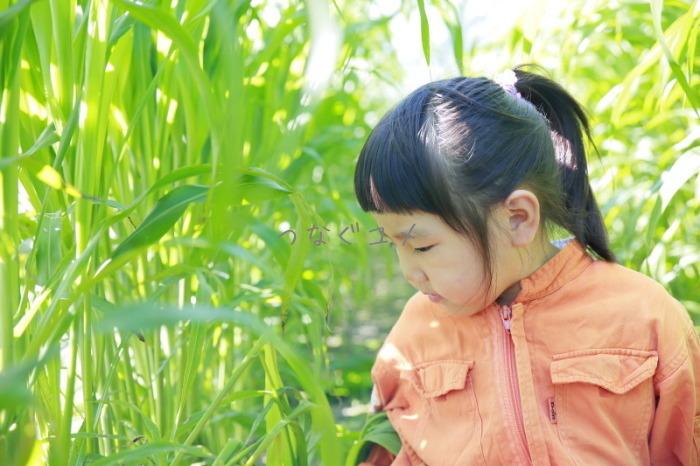 d0258417_16340682.jpg