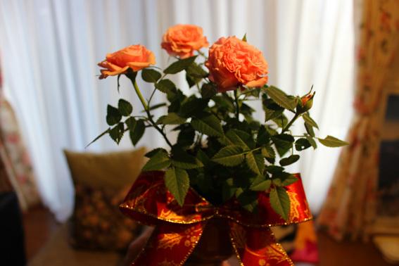 薔薇とリボンであしらうChristmas☆_a0329820_18483068.jpg