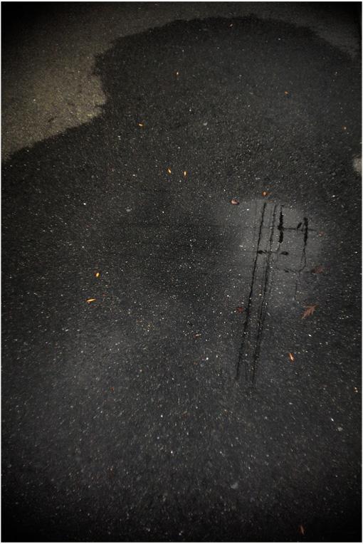 b0226423_124285.jpg
