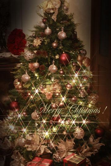 Merry Christmas! サンタさんはふるさと納税_a0264538_11423215.jpg