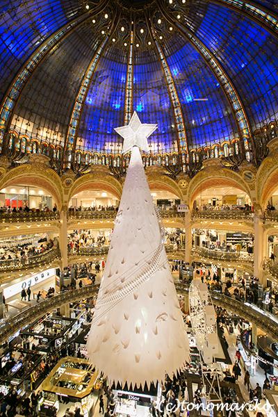 メリークリスマスまであと少し_c0024345_09563829.jpg