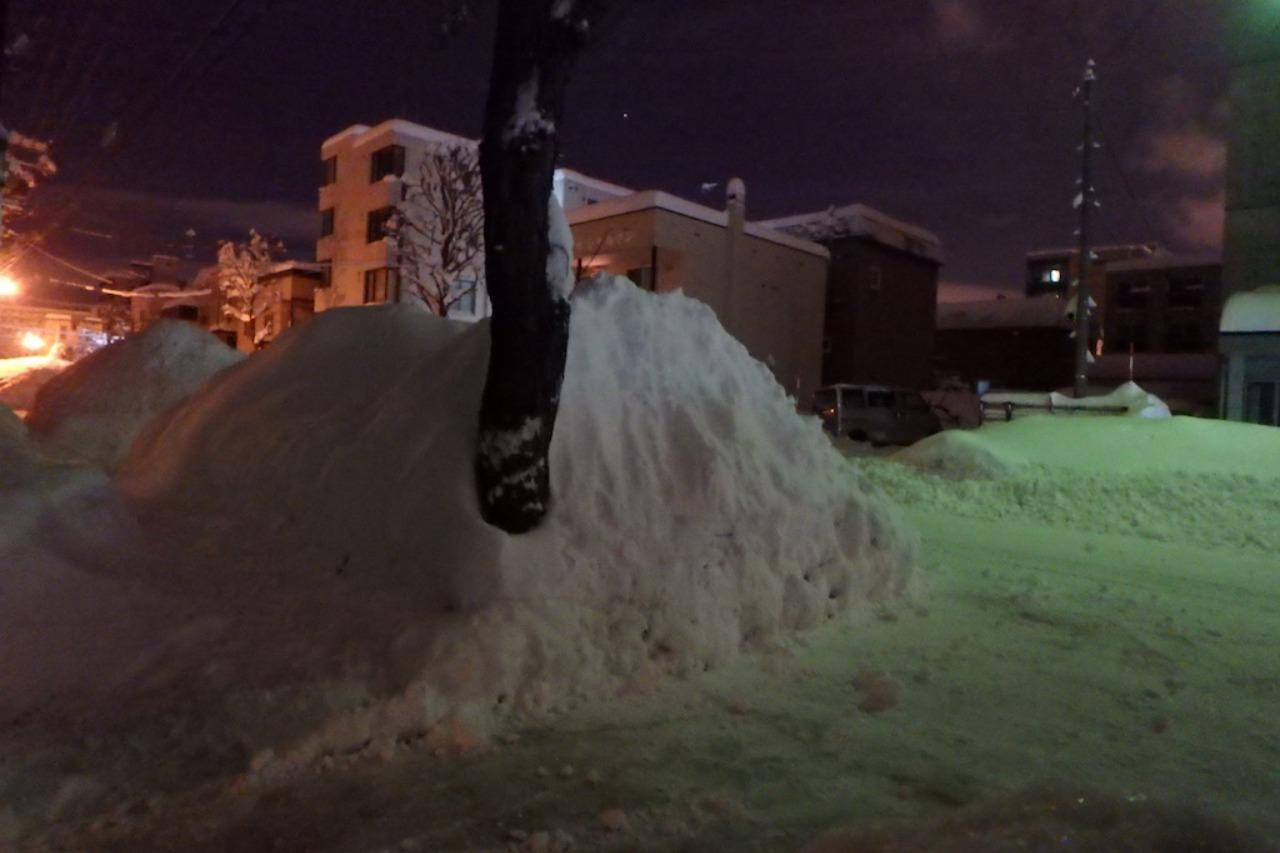 僕たちの雪かき戦争2016_e0159646_3153151.jpg