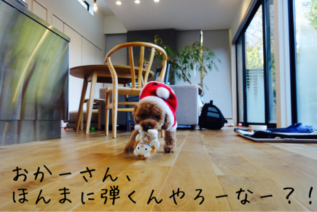 クリスマス!_b0370192_10224519.jpg