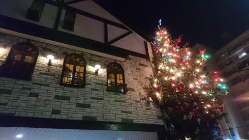 メリークリスマス_a0359239_00243500.jpg