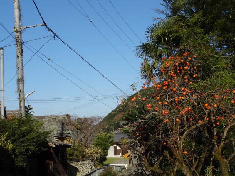 孝子駅に今年も門松を飾りました・・・みさき里山クラブ  by  (TATE-misaki)_c0108460_21475488.jpg
