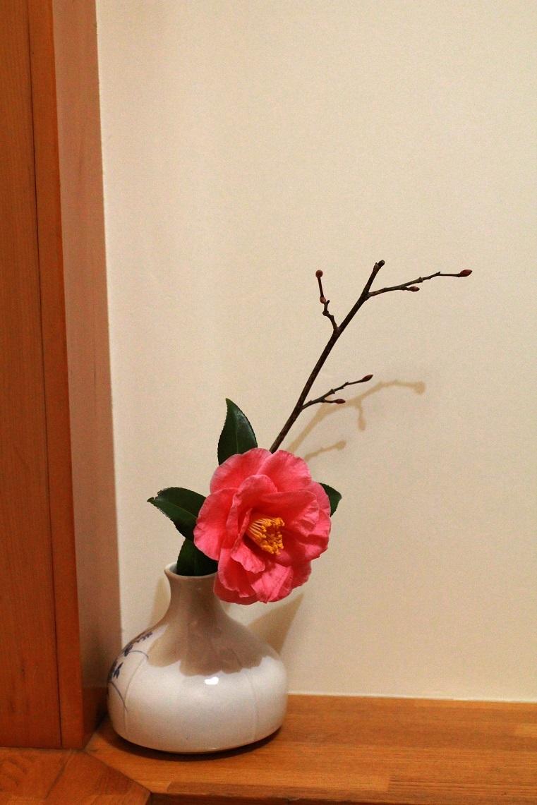 お茶会の忘年会  ~椿、ロウバイ~_a0107574_17534781.jpg