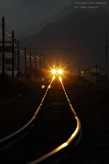 薄暗い朝の光_d0309612_23390327.jpg