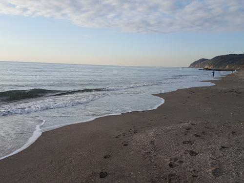 ことしも海辺の餅つきにおよばれ_e0016828_11474066.jpg