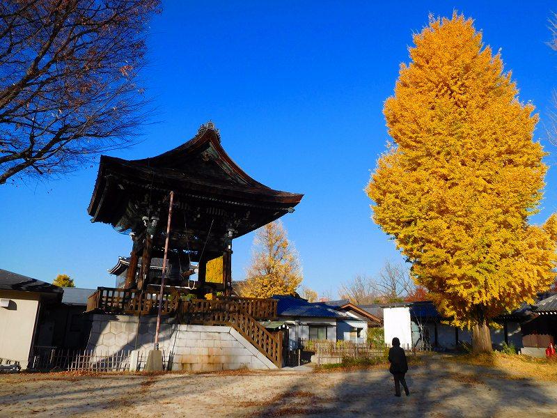 参詣客が絶えない「東本願寺」20161203_e0237645_14403017.jpg