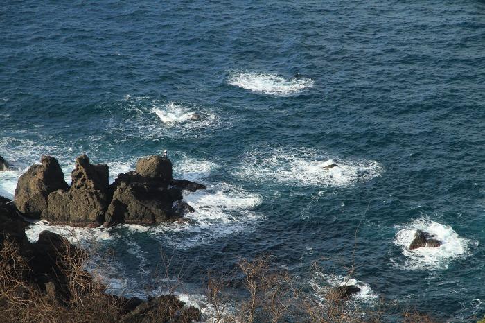 越前海岸_c0155950_23411491.jpg
