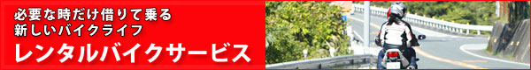 スーパーカブ110にバイクザシートインサイド_e0114857_186275.jpg