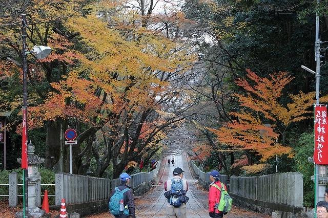 西国街道・大原野神社コース(納会ウオーク)_b0044663_141384.jpg