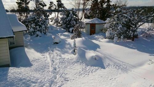 ホワイトすぎるクリスマス_a0107184_01223515.jpg