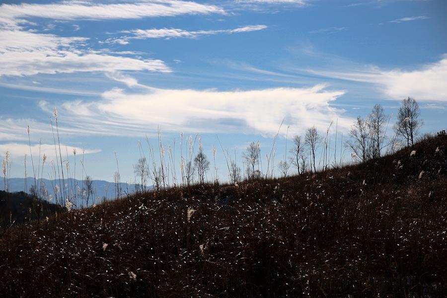 西白樺湖ー車山(2016 12/18) _c0035245_21535833.jpg